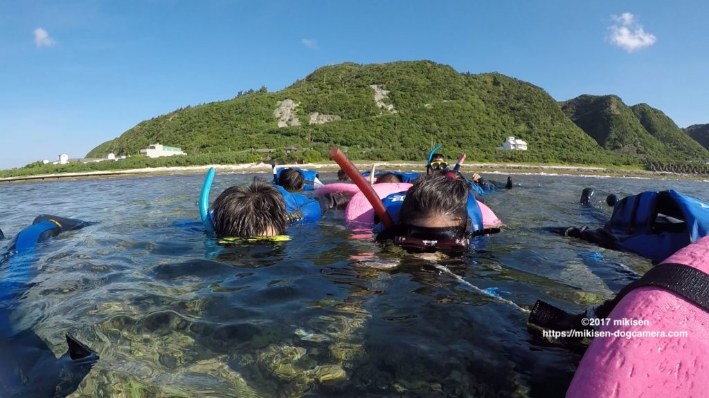 snorkelling風景