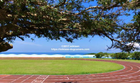 海に面した学校